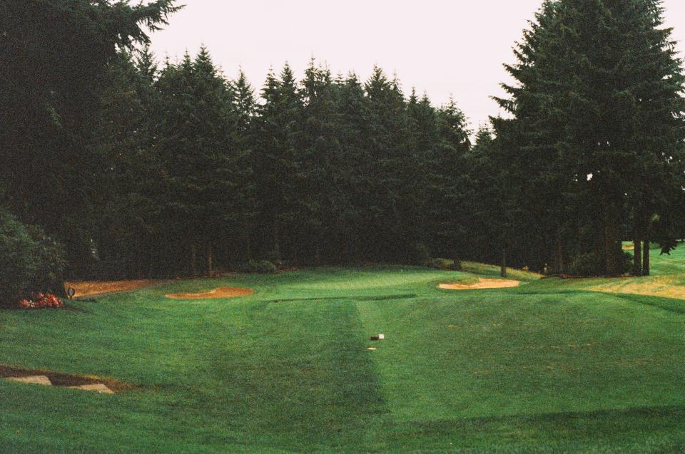 golf course fairway green sand trap sports trees forest green hole