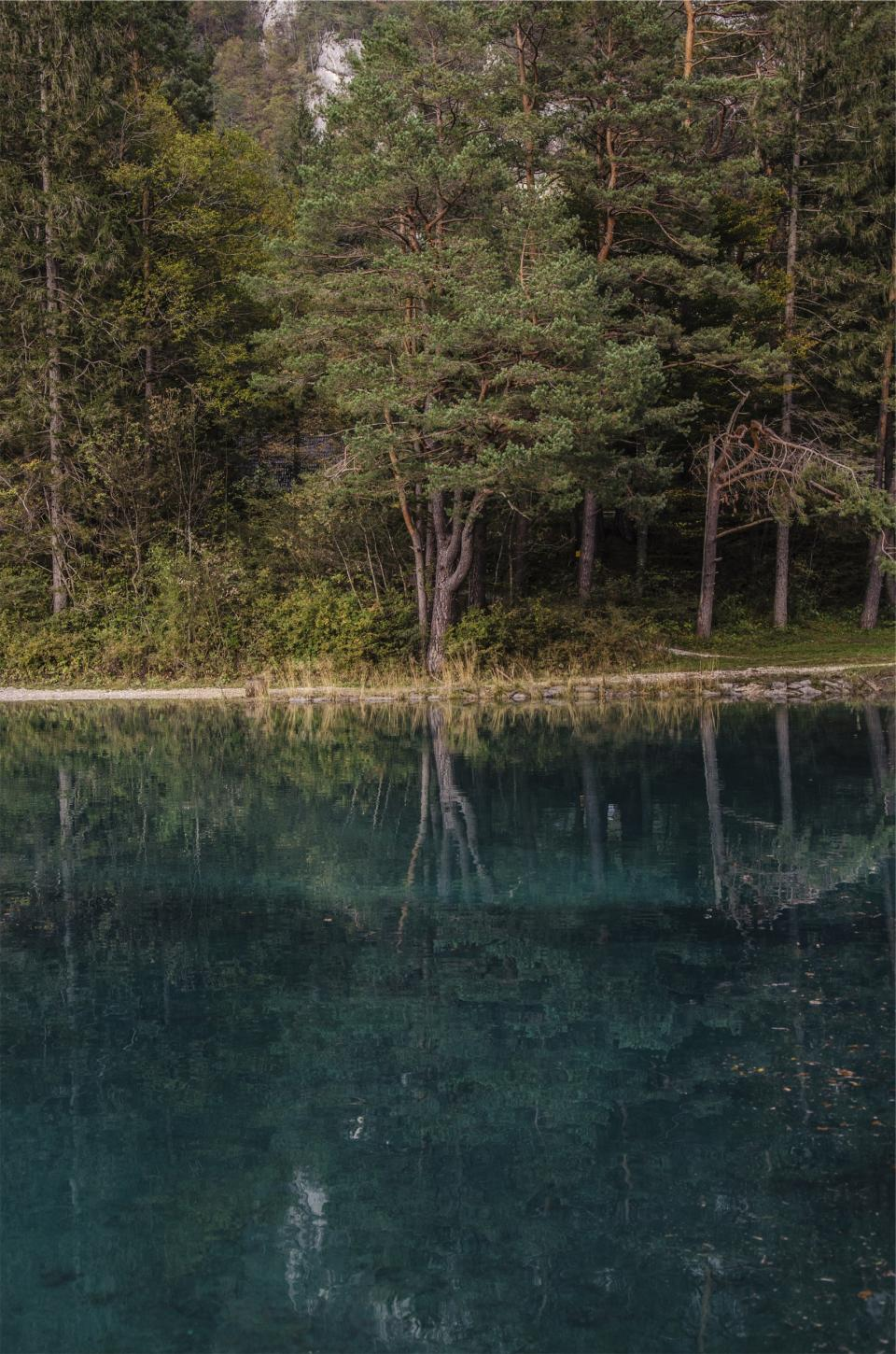 lake water reflection trees forest nature