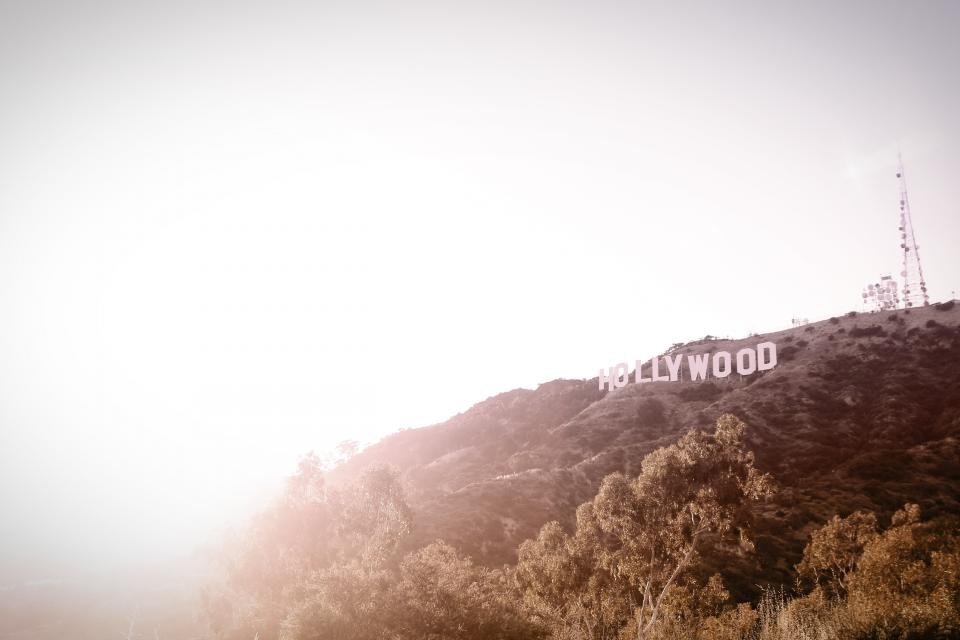 hollywood california usa united states sign trees hills lookout