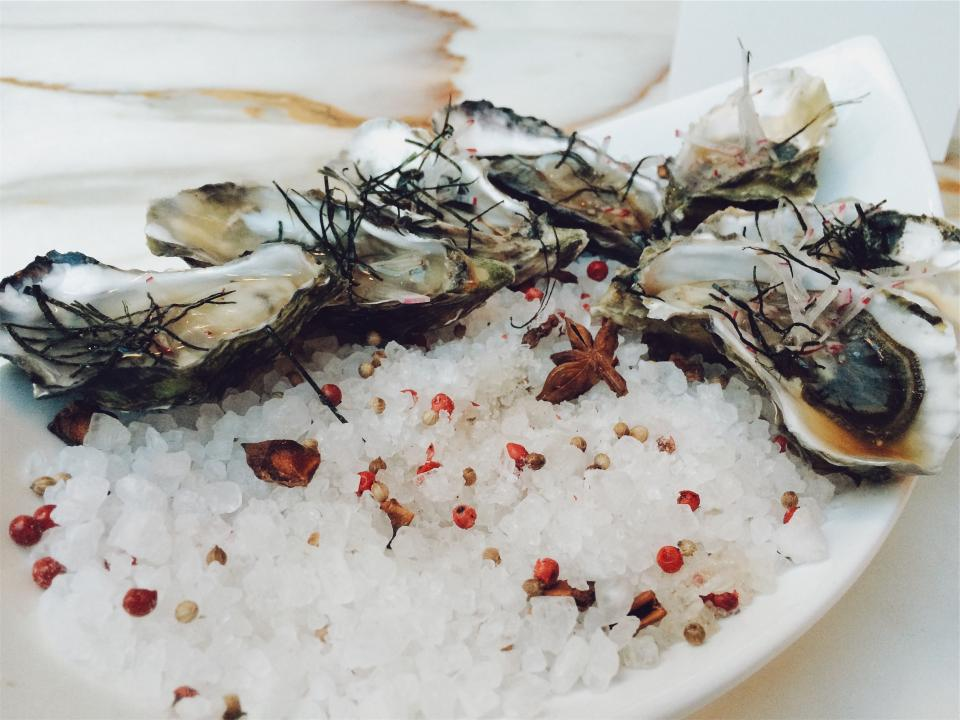 oysters seafood shells ice