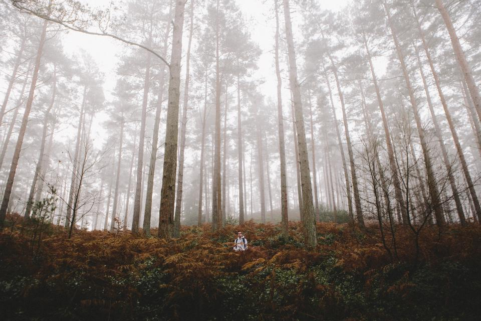 people man hiking walking travel outdoor trees plant nature grass forest fog cold