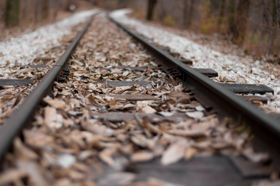 leaf fall autumn track railway blur
