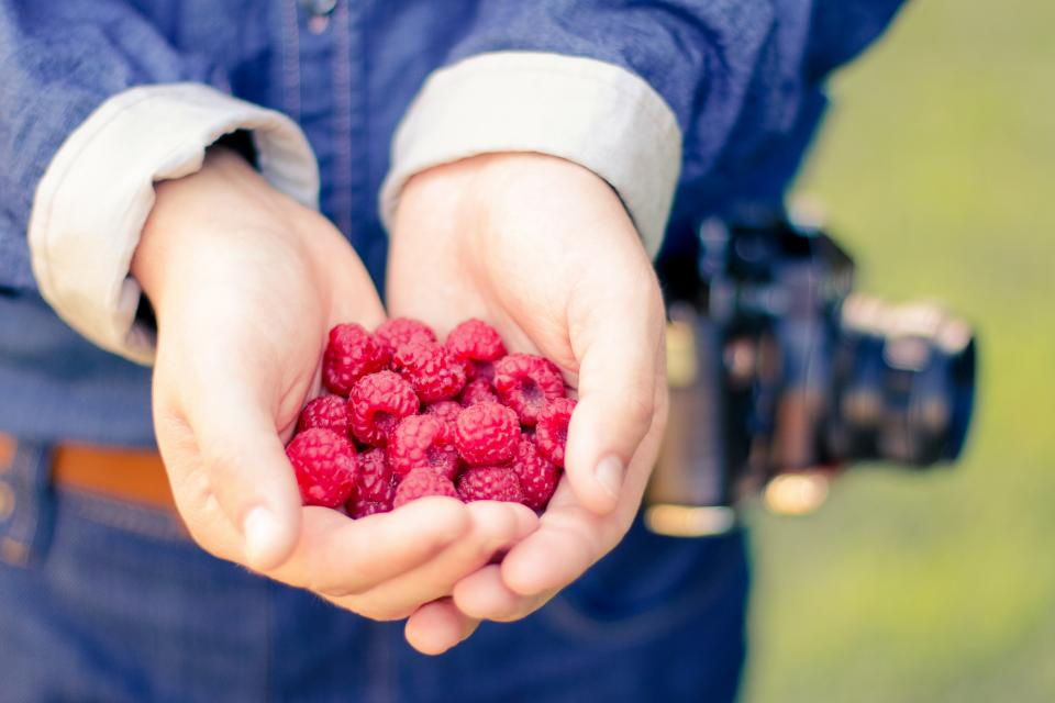 raspberries berries fruits food healthy hands palms