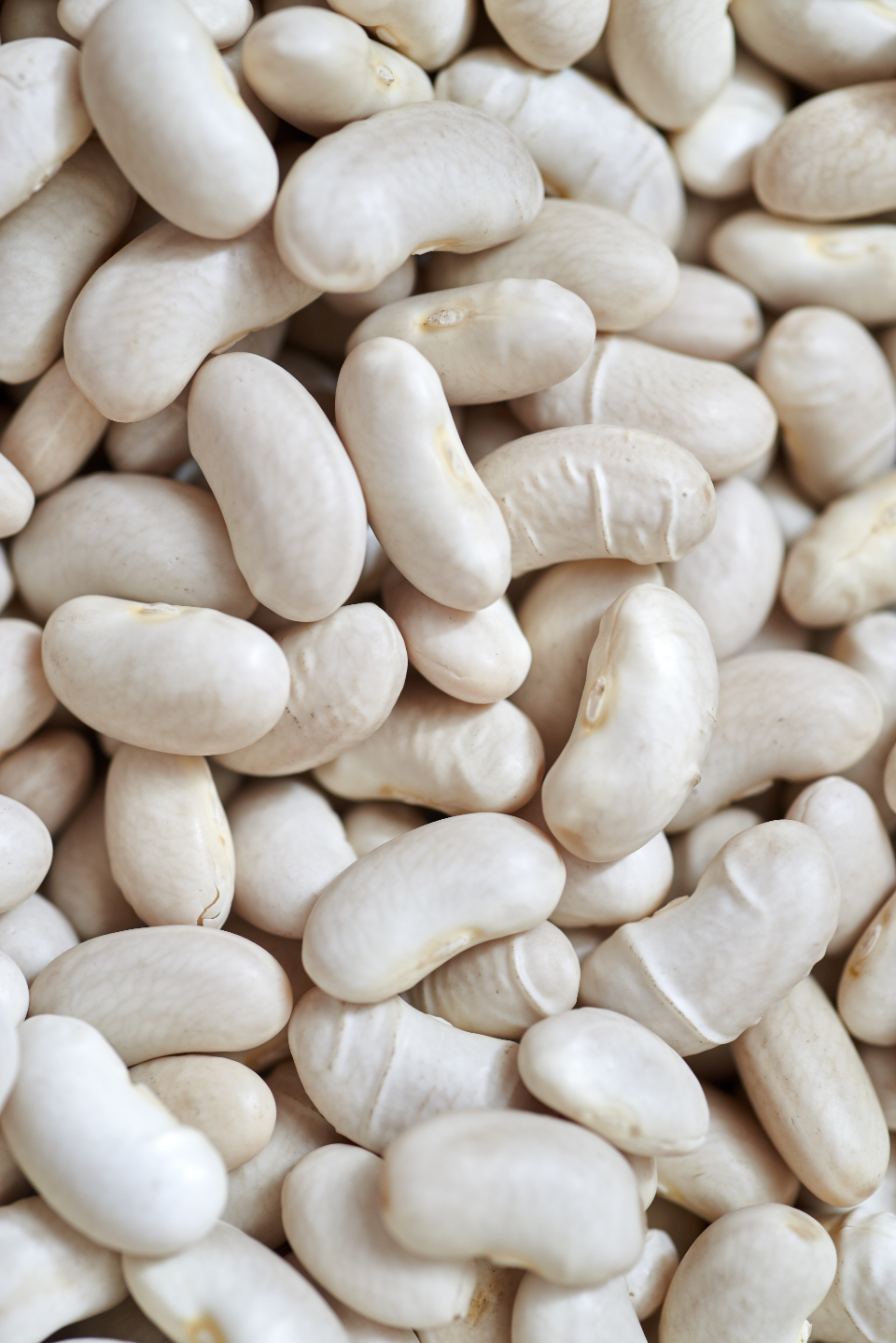 white beans food close up ingredients cooking kitchen nutrition raw organic diet healthy texture vegan legume macro seed
