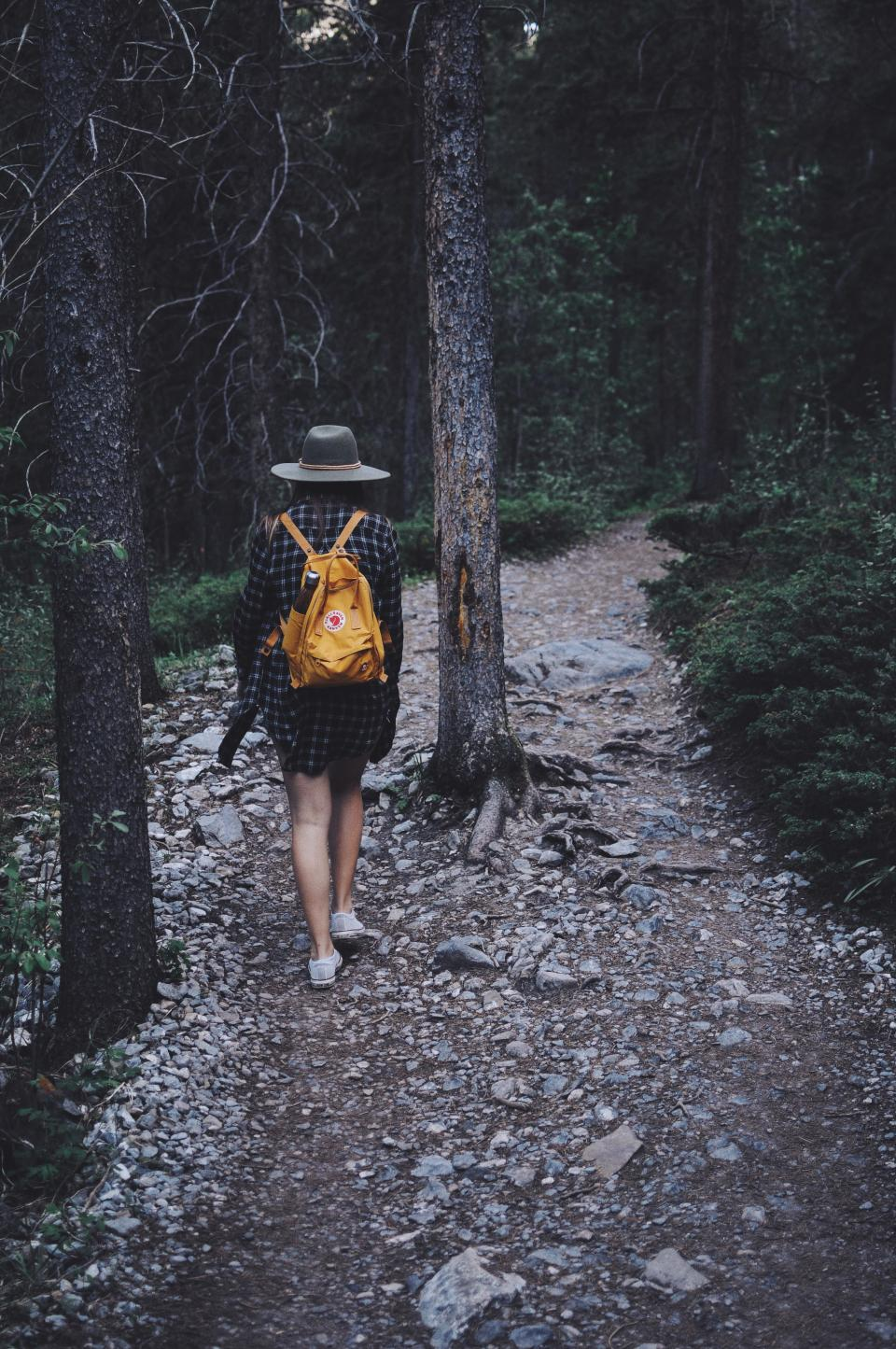 dark people alone girl walking hiking forest plants trees pathway travel adventure outdoor nature