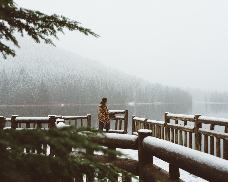 people woman alone lake water trees plant bridge snow winter cold nature mountian landscape travel
