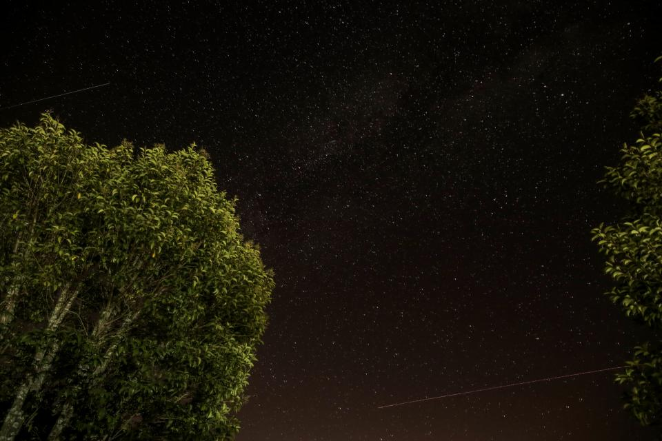 galaxy night stars shooting trees dark sky nature space