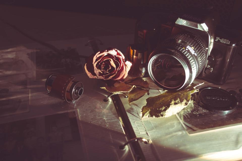 camera old vintage film lens analog shutter iso aperture manual rose petal autumn fall
