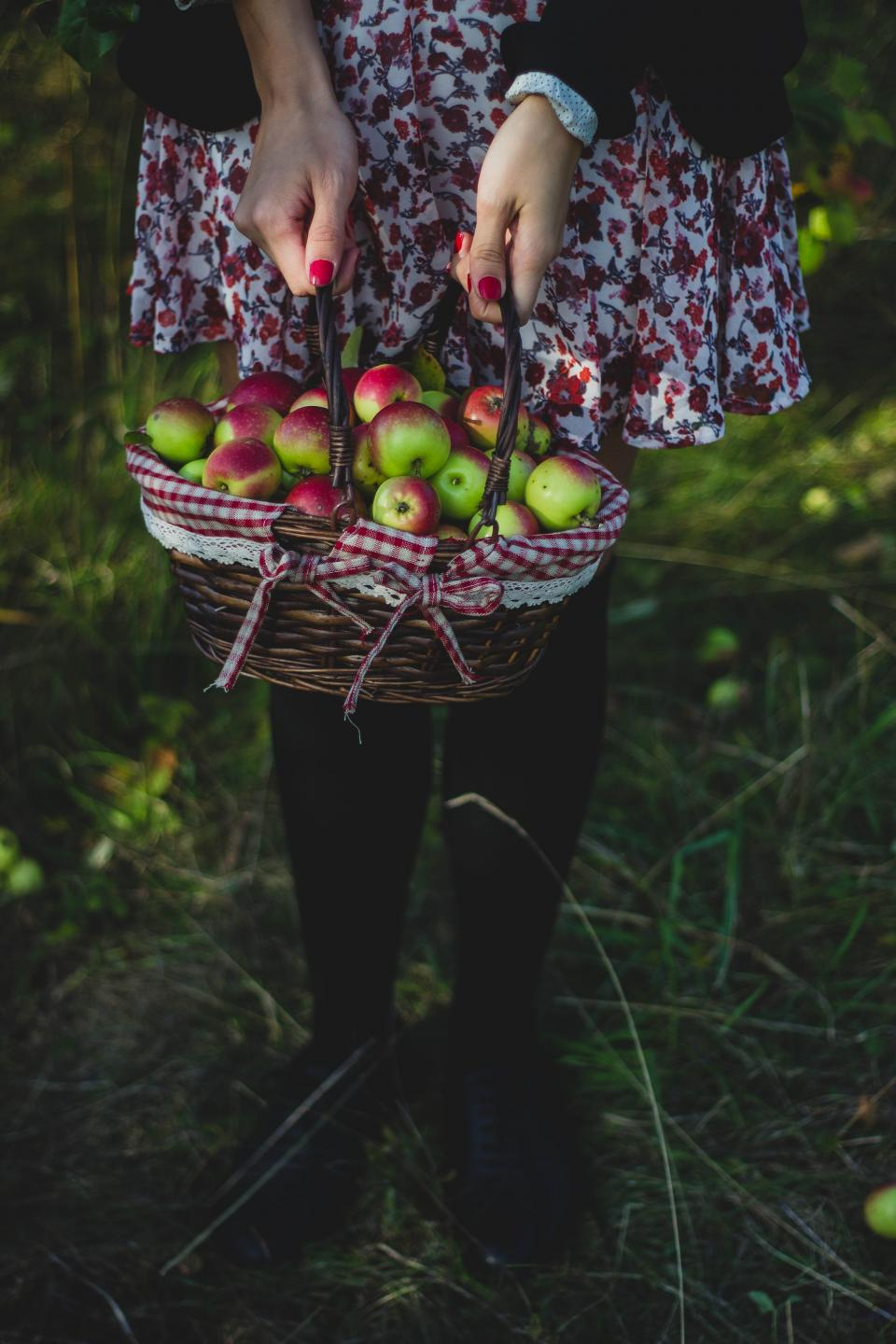 apple basket fruit food green grass outdoor farm harvest people woman girl bokeh blur