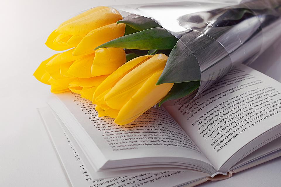 yellow petal flower bouquet tulip book read