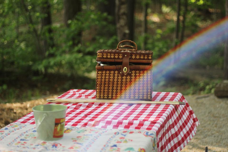 table cloth basket picnic garden rainbow outdoor trees stick nature bokeh