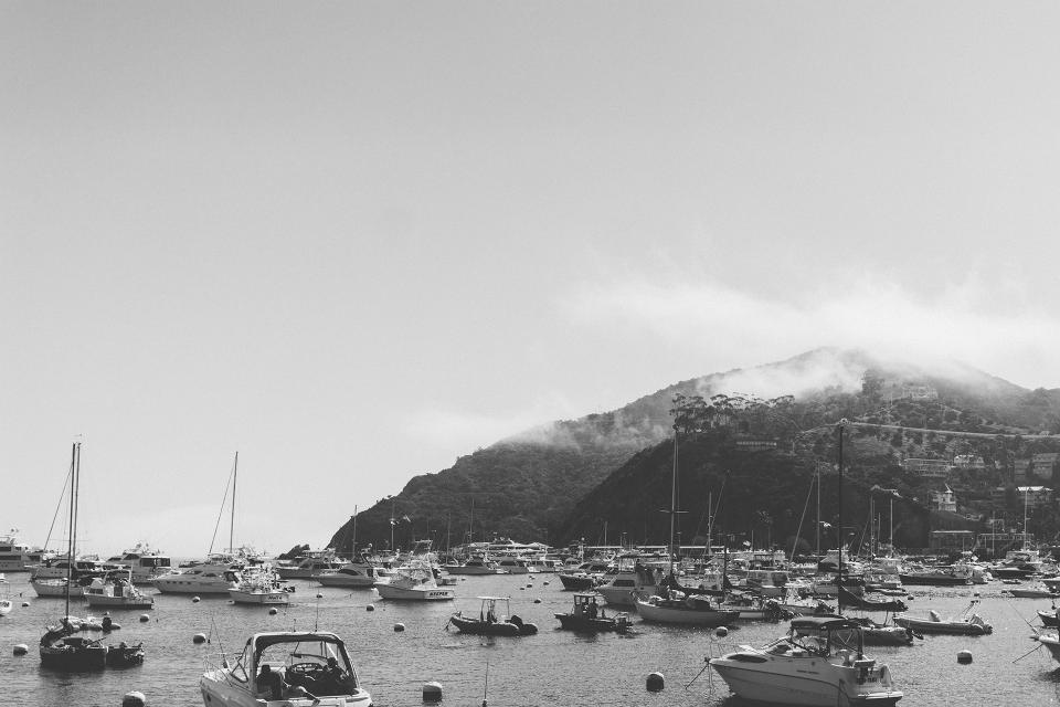 catalina boats marina harbor harbour island ocean coast black and white