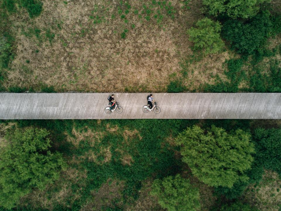 green trees plant nature field bridge infrastructure road trip people riding bike travel aerial view