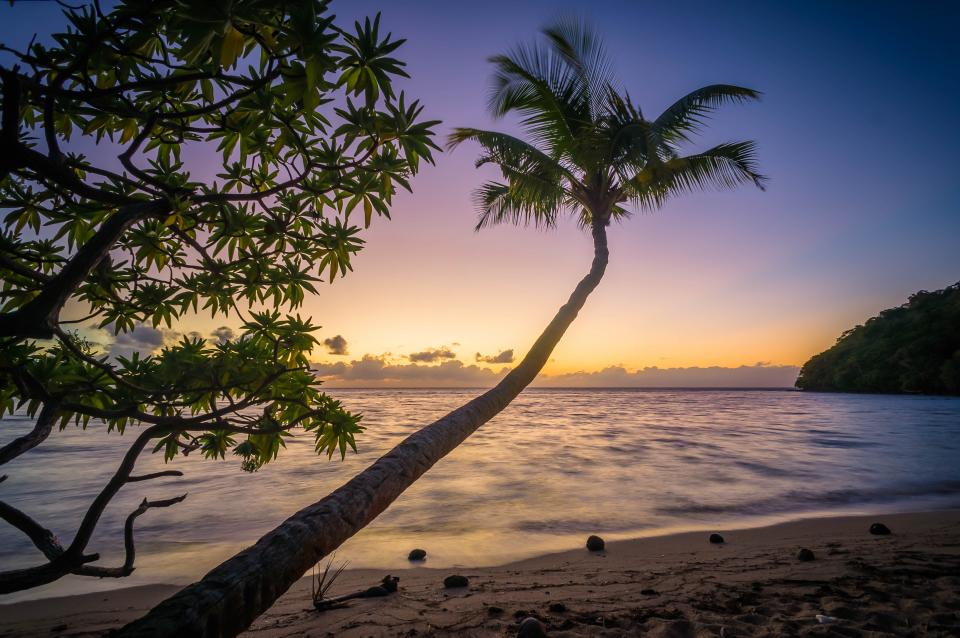 sunset dusk beach sand shore ocean sea horizon palm trees tropical trip vacation island landscape nature