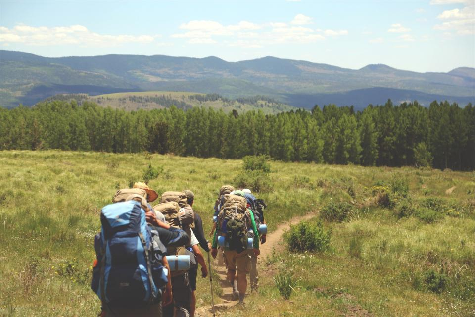 hiking hikers backpacks backpacking grass fields trees forest hills nature people fitness walking trail trekking friends team group