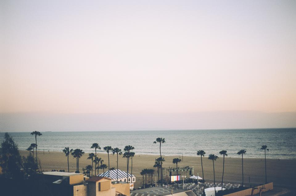 santa monica beach sand palm trees water ocean sky stores shops