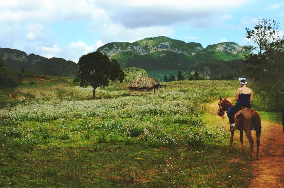nature grass trees plains hut animals horse people woman lady girl ride