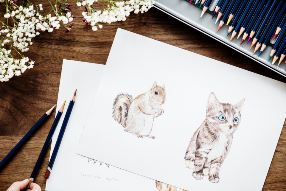 adorable animal art artist bright cat closeup color colorful coloring cute design drawing flat lay flatlay freelance freelancer hobby illustration illustrationist paper pen pencil person rainbow set squirrel stationery