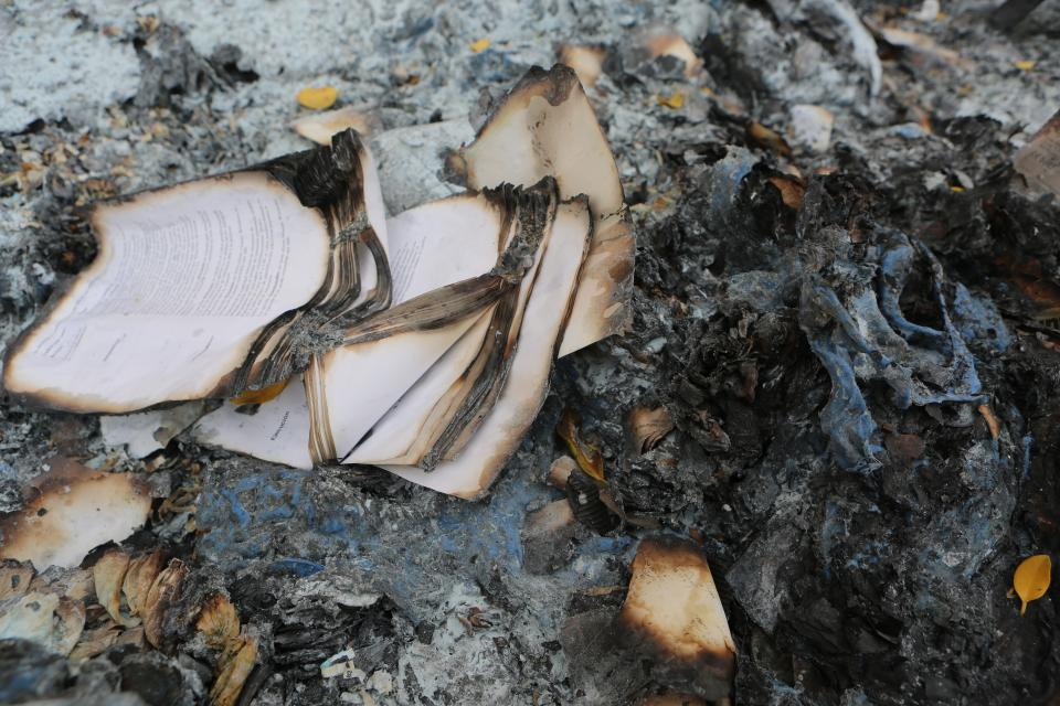 books burnt burning ashes fire pages
