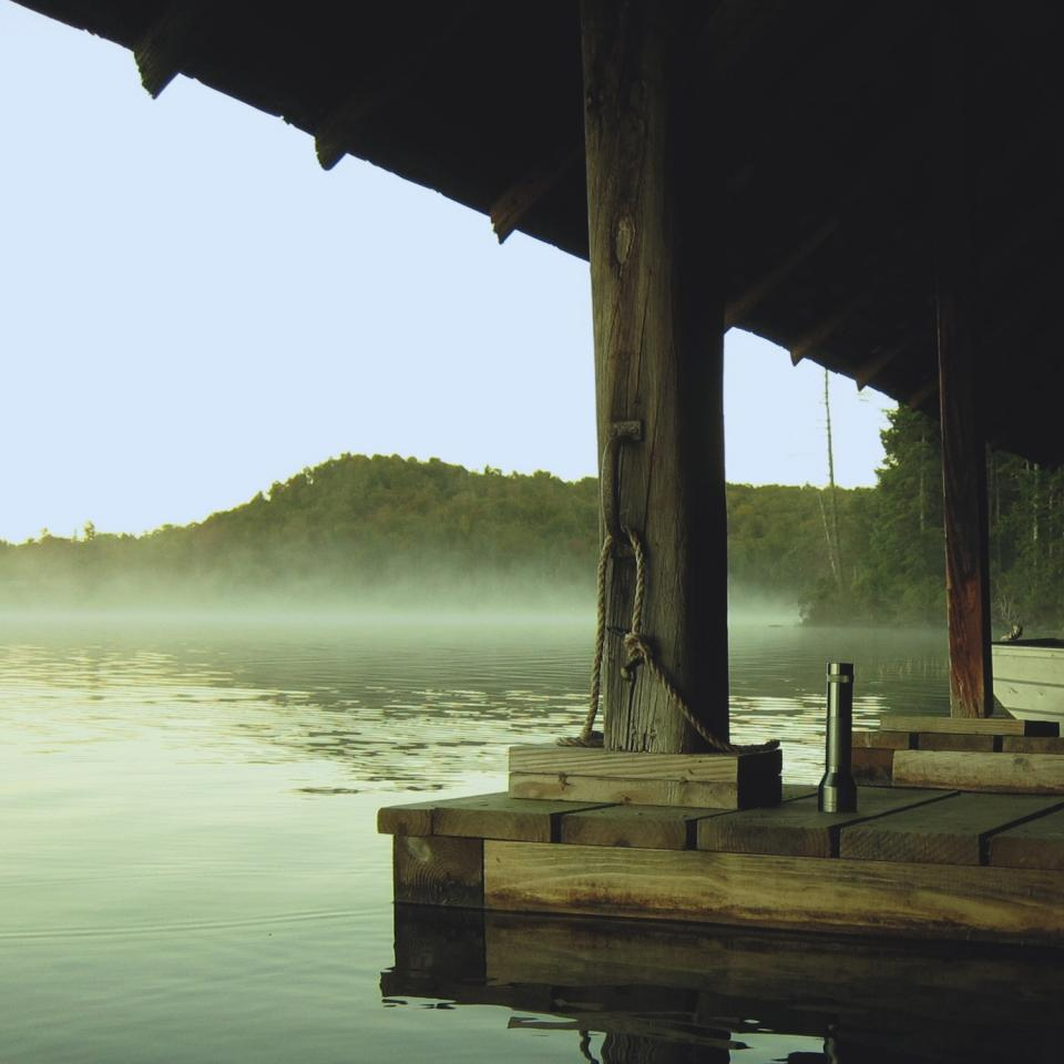 sky trees nature water dock wood rope flashlight shade sun fog