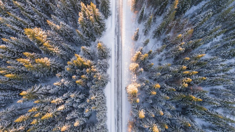 nature landscape aerial woods forest road snow winter cold weather travel adventure