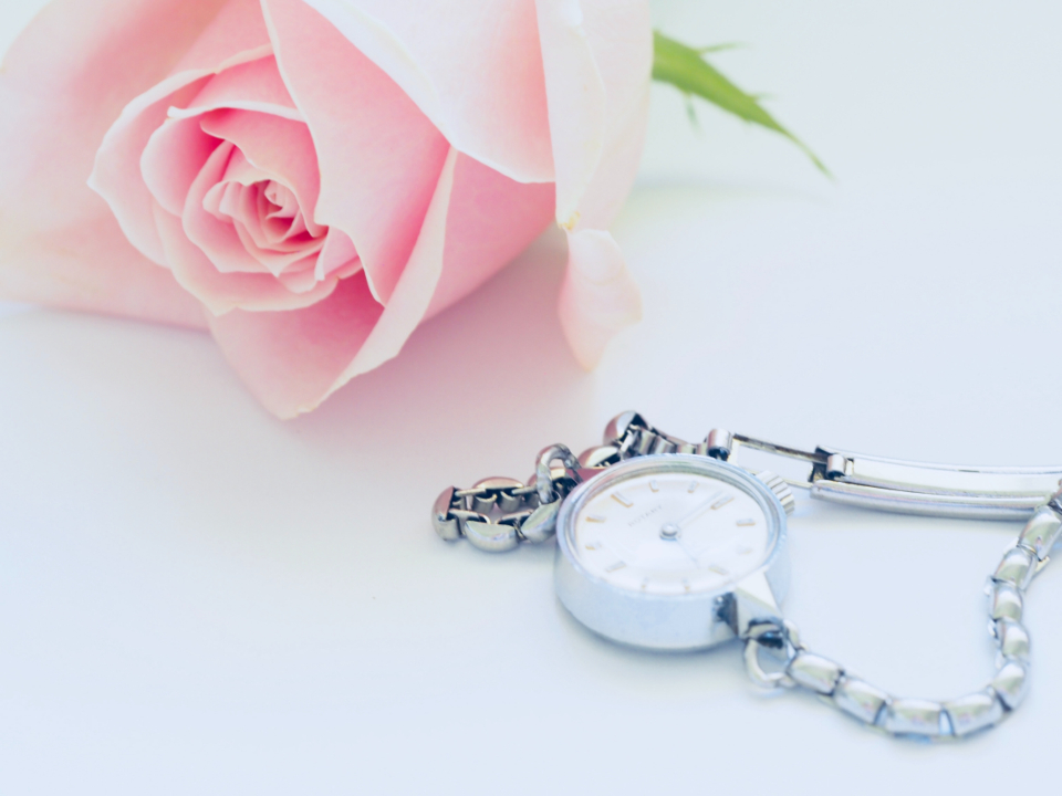 pink rose silver watch pink jewellery romantic white background wallpaper woman