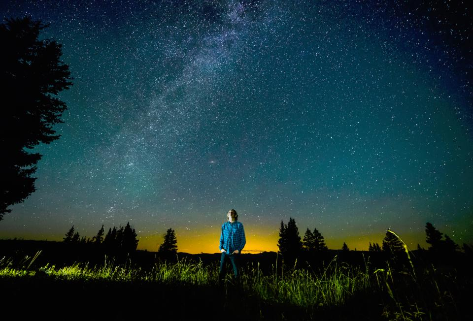 nature trees grass sky night stars people man guy