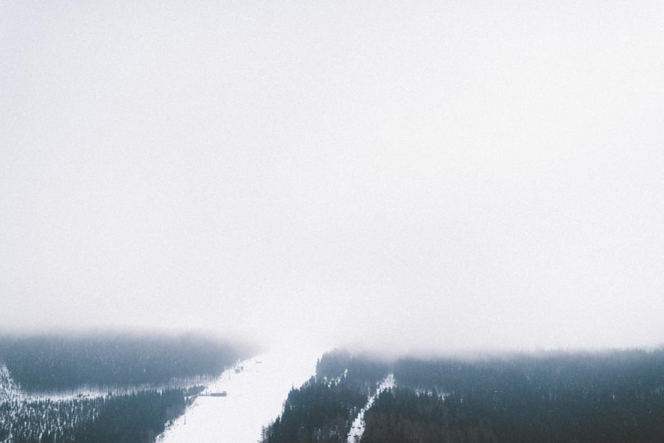 nature landscape snow winter cold weather white woods forest trees travel adventure