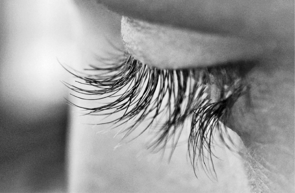 eye lashes macro close up person black and white cosmetics makeup detail face vision