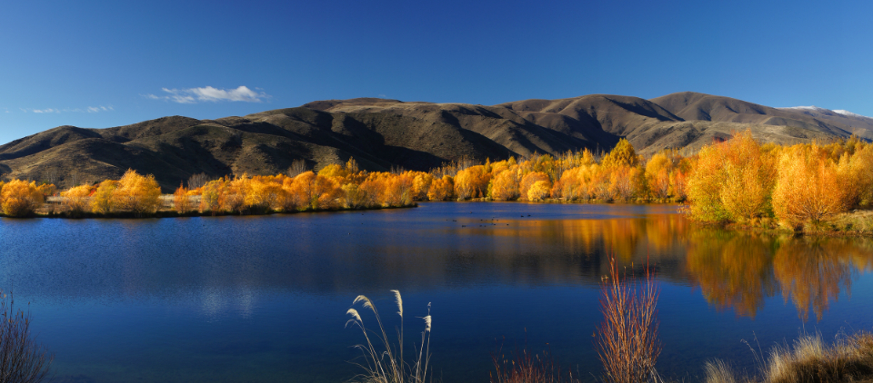 autumn foliage landscape trees water lake mountains nature outdoors sky environment climate hiking explore forest leaves