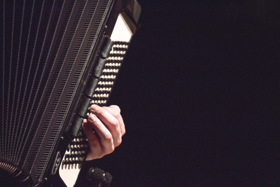 man musician accordian playing music classical hand male