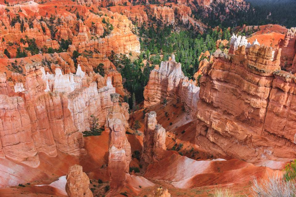 orange rock formation landscape nature grass green trees plants park usa