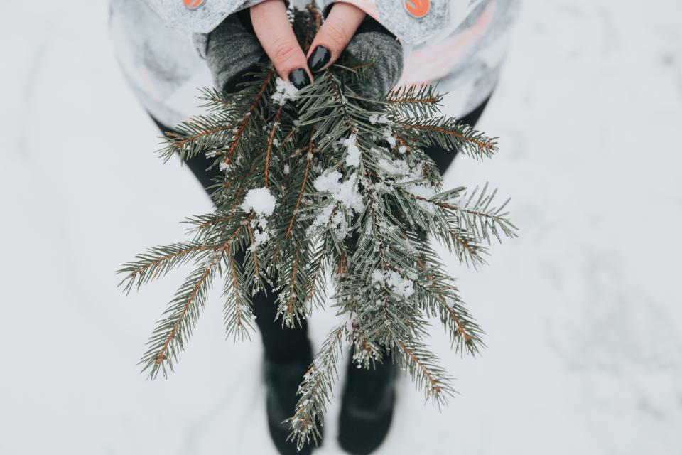 people woman blur outdoor snow winter green plant