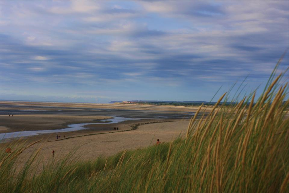 plants beach puddles sand dry people blue sky clouds