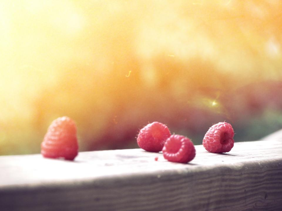 red rasberries fruits sunshine