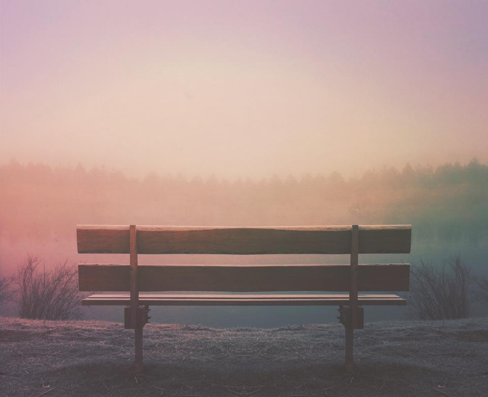 wood bench outdoors fog foggy trees sunset sky nature