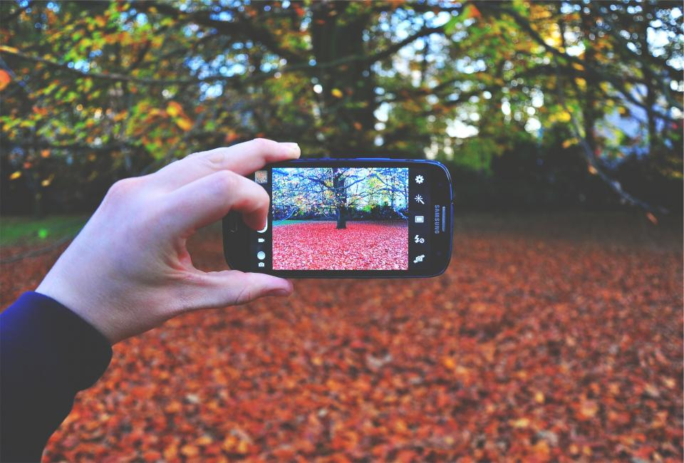 samsung galaxy phone mobile screen picture photograph photographer hands autumn fall leaves trees technology
