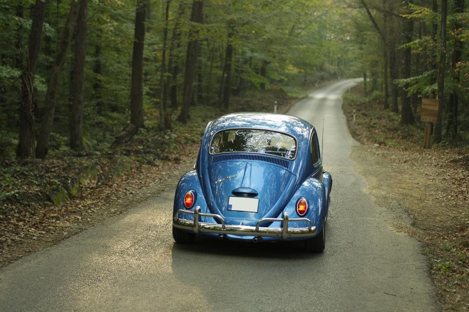 volkswagen vintage car transportation travel adventure old rust mags trees woods forest road