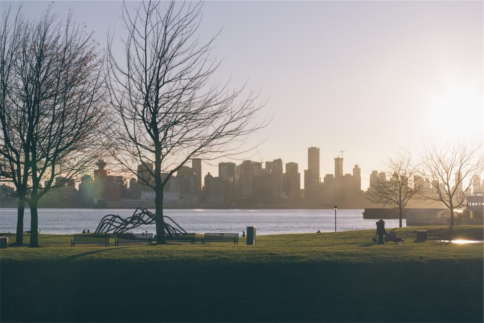 sunrise park grass benches trees lake water skyline buildings towers architecture sky