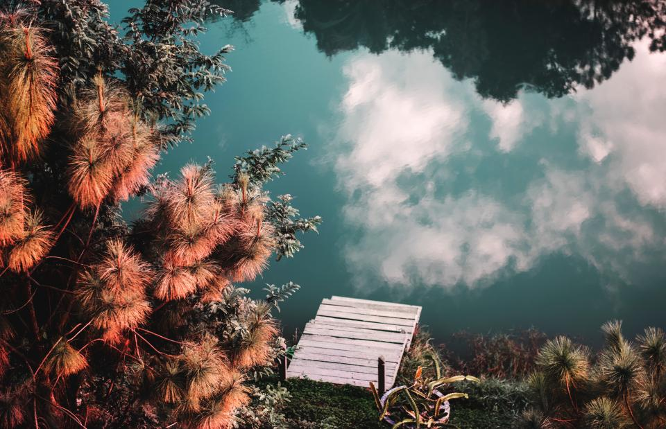 nature landscape clouds sky travel adventure trek reflection water ocean sea flower red autumn fall bloom green leaves plants