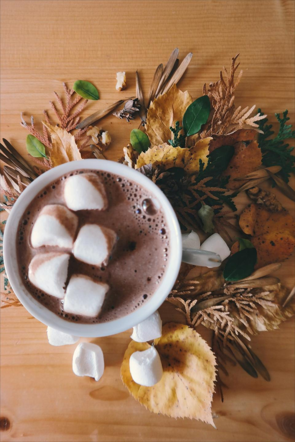 hot chocolate drink marshmallow food cup leaves
