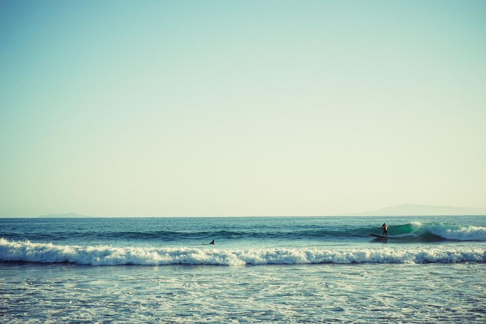 free photo of surfing  surfer
