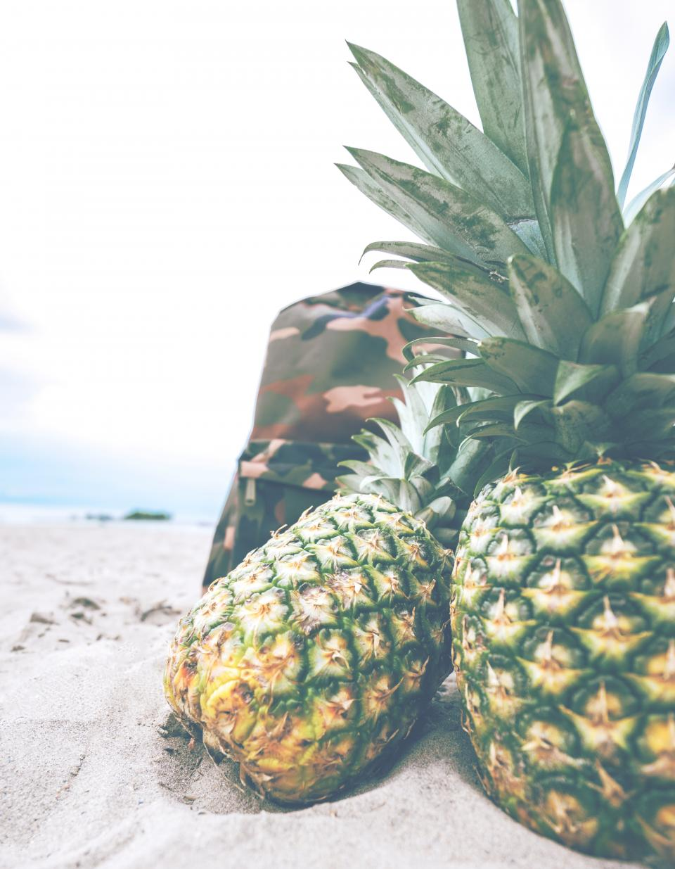 pineapple dessert appetizer fruit juice crop sand beach bag