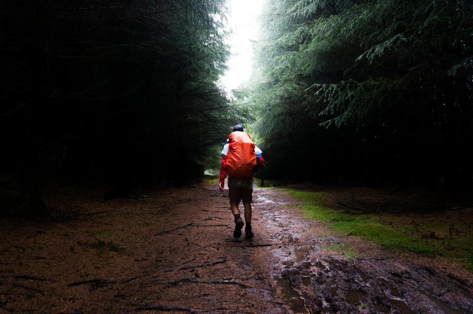 trees grass rain wet road pathway leaves wood travel adventure outdoor hike mountaineer people man walking