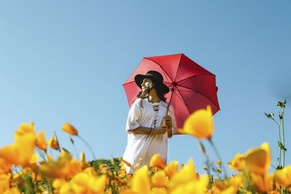 flower yellow petal bloom garden plant nature autumn fall people woman hat umbrella clouds sky green leaves