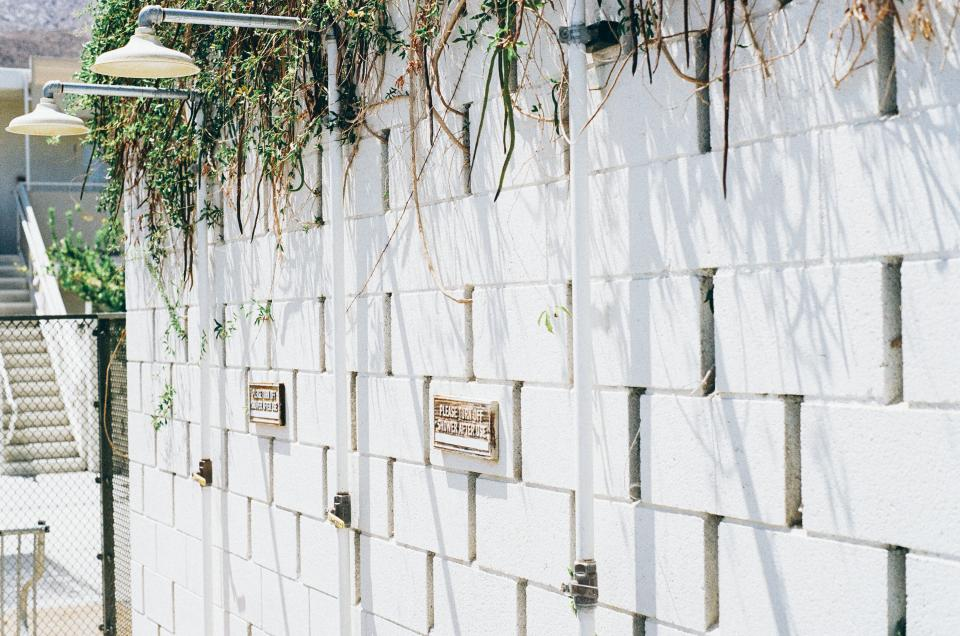 showers concrete wall vines white