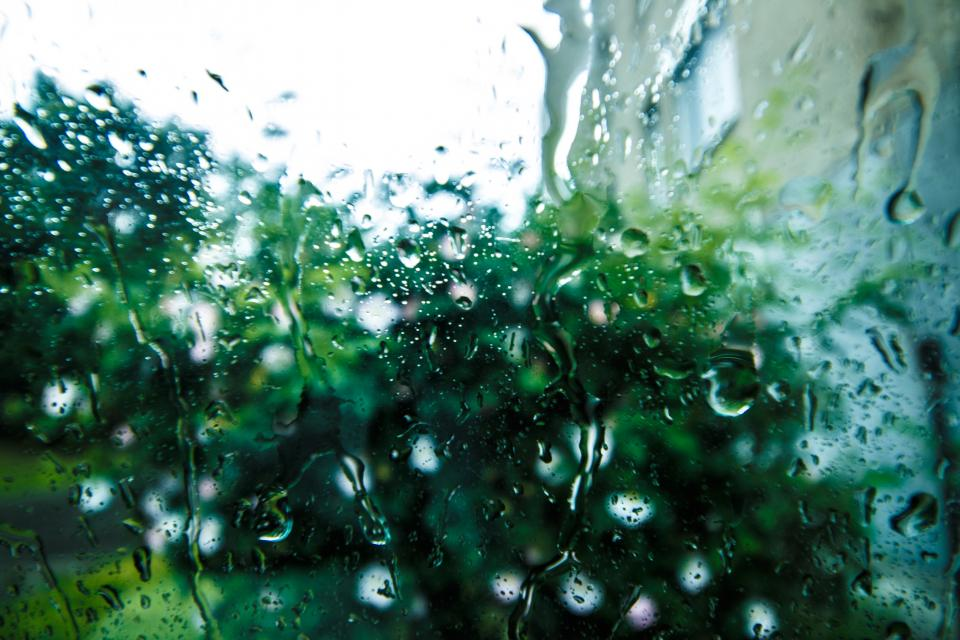 still items things windows pane glass rain water droplet trees view bokeh
