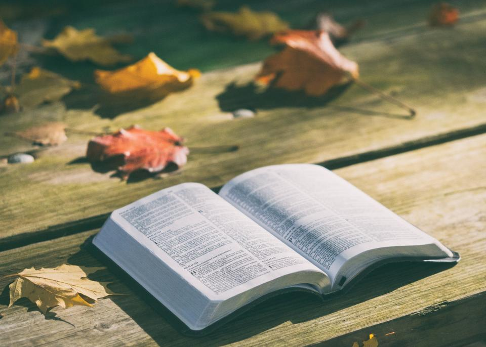bible book reading table leaf fall autumn