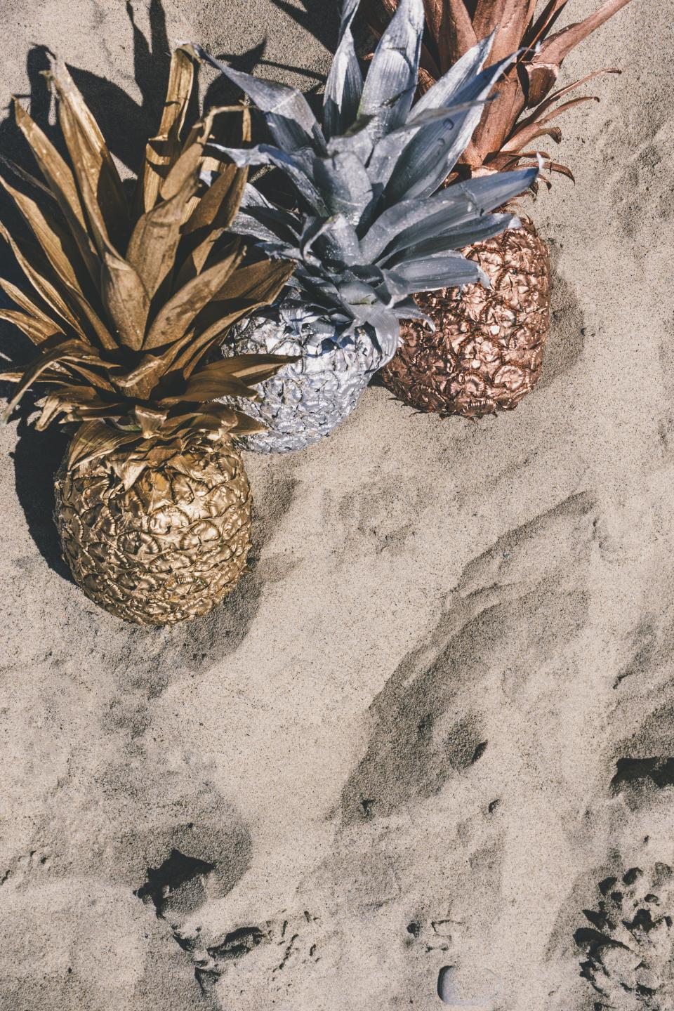 pineapple dessert appetizer fruit juice crop beach ocean sea sand silver gold paint