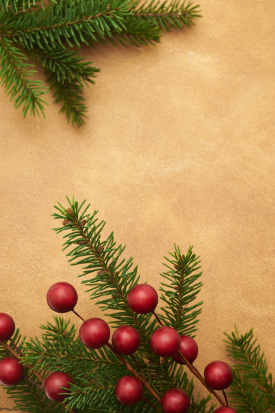 seasonal backgrounds christmas flat lay pine tree branches festive copyspace holiday merry xmas background berries